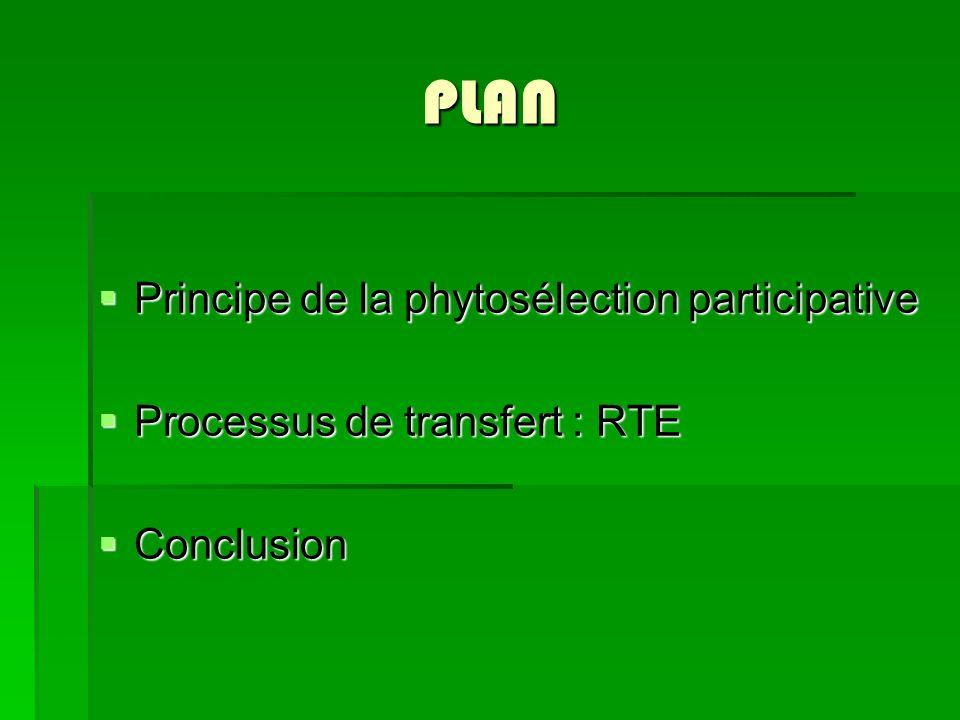 PLAN Principe de la phytosélection participative Principe de la phytosélection participative Processus de transfert : RTE Processus de transfert : RTE
