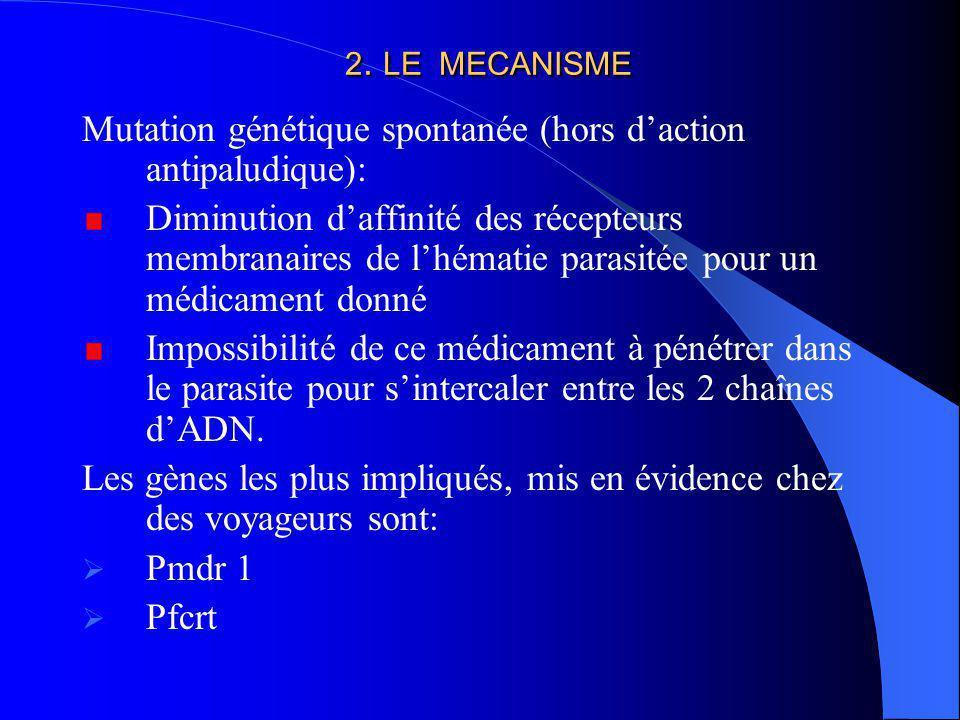 2. LE MECANISME Mutation génétique spontanée (hors daction antipaludique): Diminution daffinité des récepteurs membranaires de lhématie parasitée pour