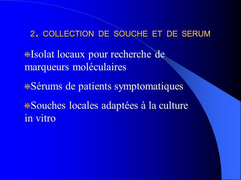 2. COLLECTION DE SOUCHE ET DE SERUM Isolat locaux pour recherche de marqueurs moléculaires Sérums de patients symptomatiques Souches locales adaptées