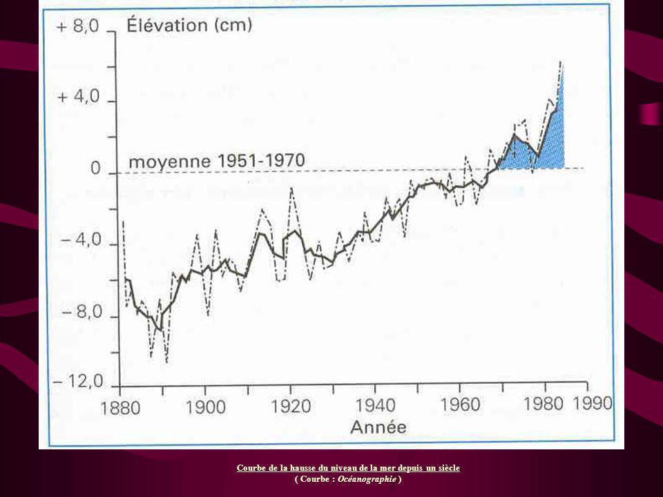 Courbe de la hausse du niveau de la mer depuis un siècle ( Courbe : Océanographie )