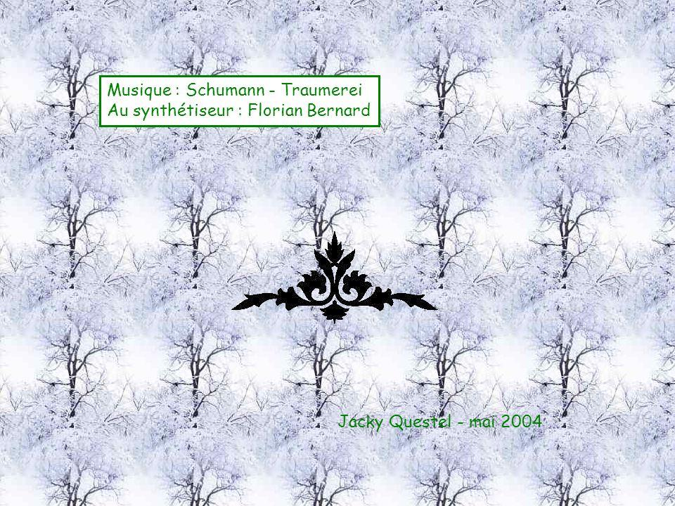 Jacky Questel - mai 2004 Musique : Schumann - Traumerei Au synthétiseur : Florian Bernard
