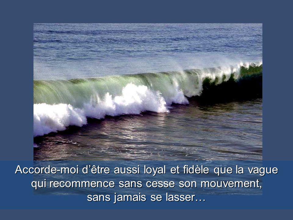 Donne-moi Mon Dieu un corps bien arrimé pour affronter les tempêtes de la vie…