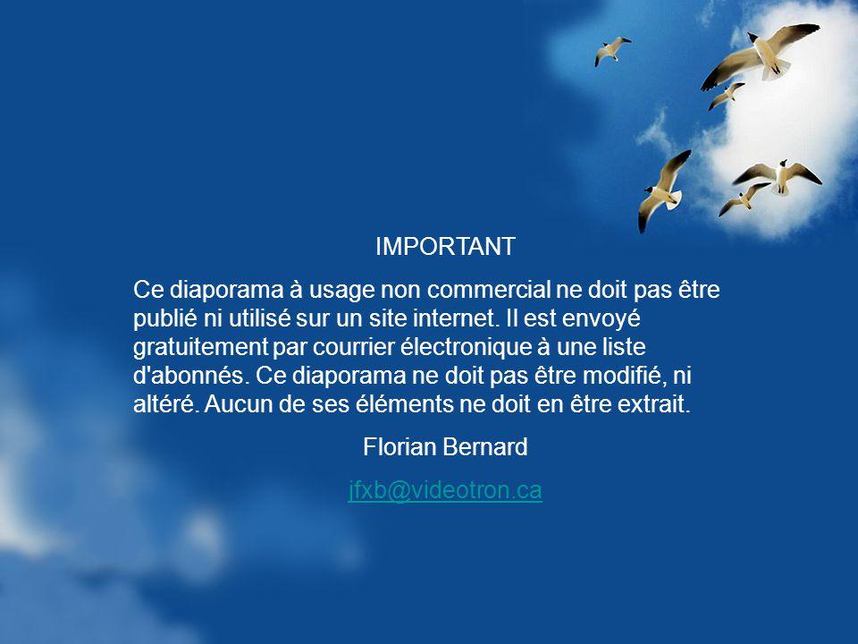 A ma manière - Enrique Chia Création Florian Bernard Tous droits réservés – 2005 jfxb@videotron.ca