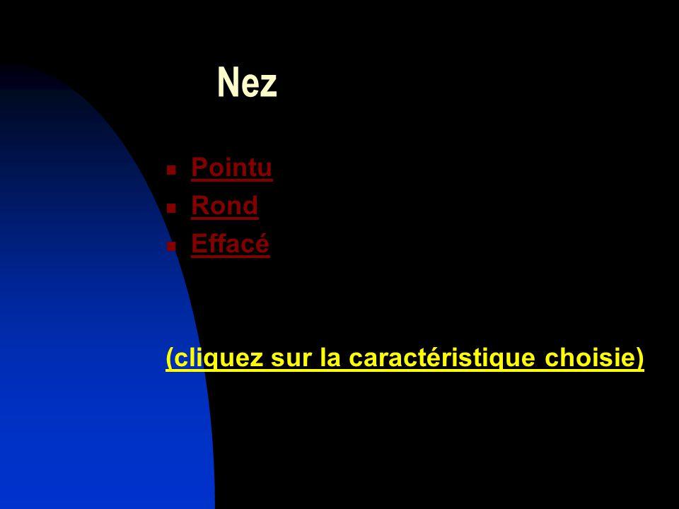Nez Pointu Rond Effacé (cliquez sur la caractéristique choisie)