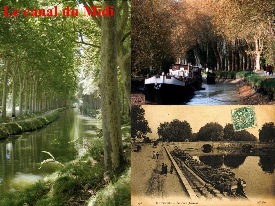 11 Le canal du Midi