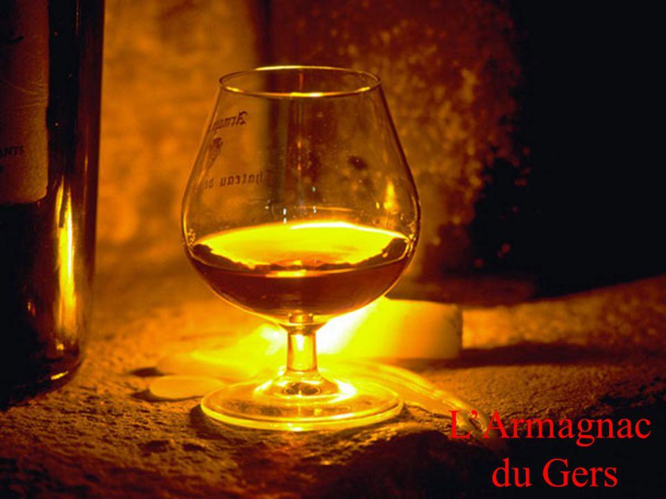 18 LArmagnac du Gers