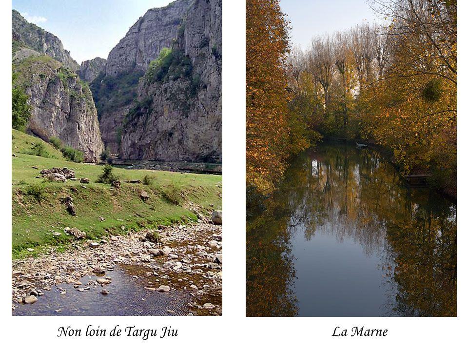 Non loin de Targu JiuLa Marne