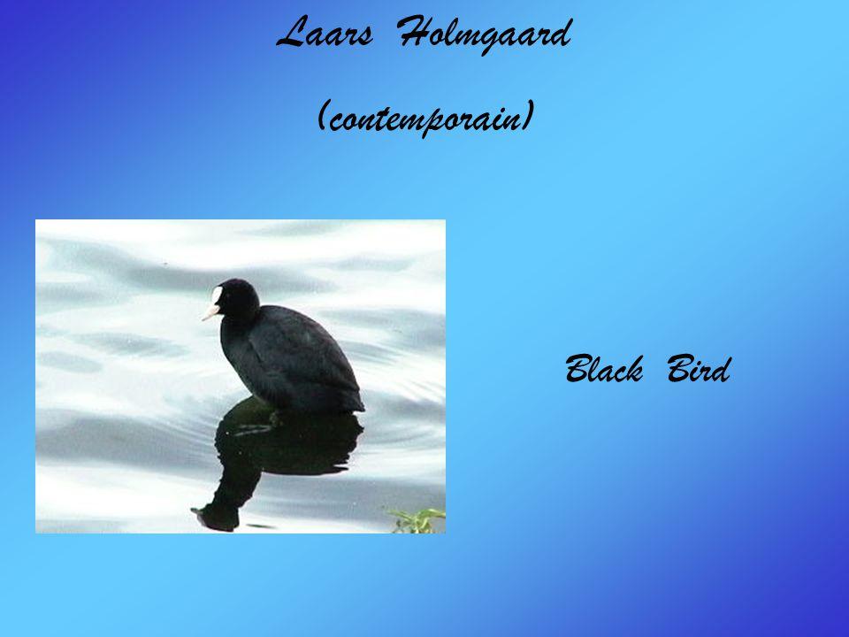 Laars Holmgaard (contemporain) Black Bird