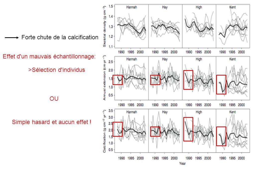 Forte chute de la calcification Effet d'un mauvais échantillonnage: >Sélection d'individus OU Simple hasard et aucun effet !