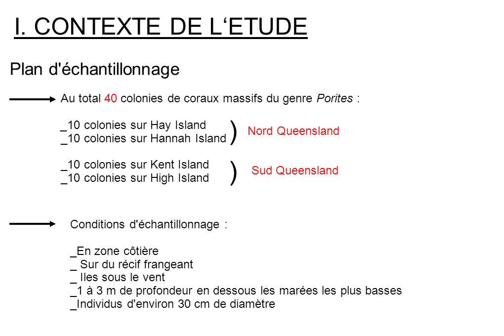 I. CONTEXTE DE LETUDE Plan d'échantillonnage Au total 40 colonies de coraux massifs du genre Porites : _10 colonies sur Hay Island _10 colonies sur Ha