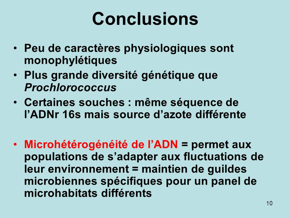 10 Conclusions Peu de caractères physiologiques sont monophylétiques Plus grande diversité génétique que Prochlorococcus Certaines souches : même séqu