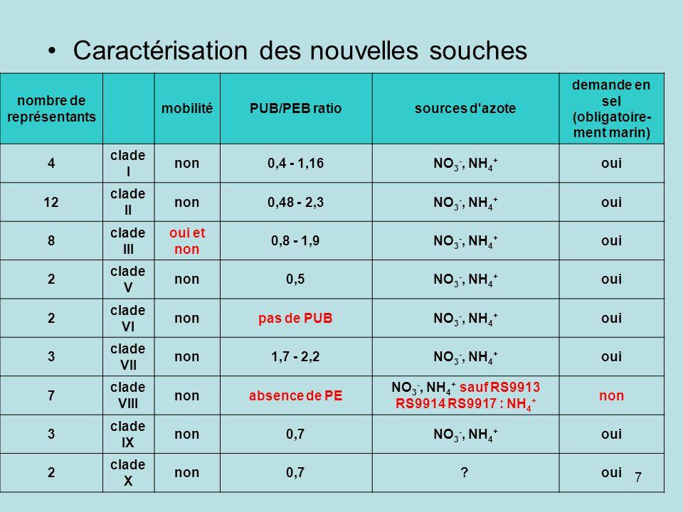 7 Caractérisation des nouvelles souches nombre de représentants mobilitéPUB/PEB ratiosources d azote demande en sel (obligatoire- ment marin) 4 clade I non0,4 - 1,16NO 3 -, NH 4 + oui 12 clade II non0,48 - 2,3NO 3 -, NH 4 + oui 8 clade III oui et non 0,8 - 1,9NO 3 -, NH 4 + oui 2 clade V non0,5NO 3 -, NH 4 + oui 2 clade VI nonpas de PUBNO 3 -, NH 4 + oui 3 clade VII non1,7 - 2,2NO 3 -, NH 4 + oui 7 clade VIII nonabsence de PE NO 3 -, NH 4 + sauf RS9913 RS9914 RS9917 : NH 4 + non 3 clade IX non0,7NO 3 -, NH 4 + oui 2 clade X non0,7.