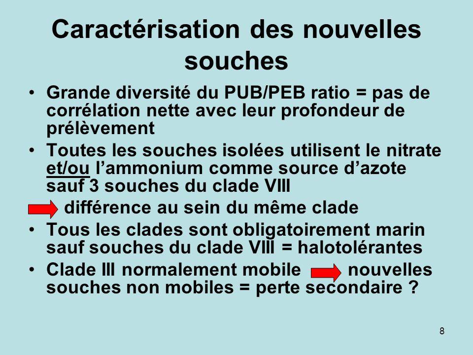 8 Caractérisation des nouvelles souches Grande diversité du PUB/PEB ratio = pas de corrélation nette avec leur profondeur de prélèvement Toutes les so