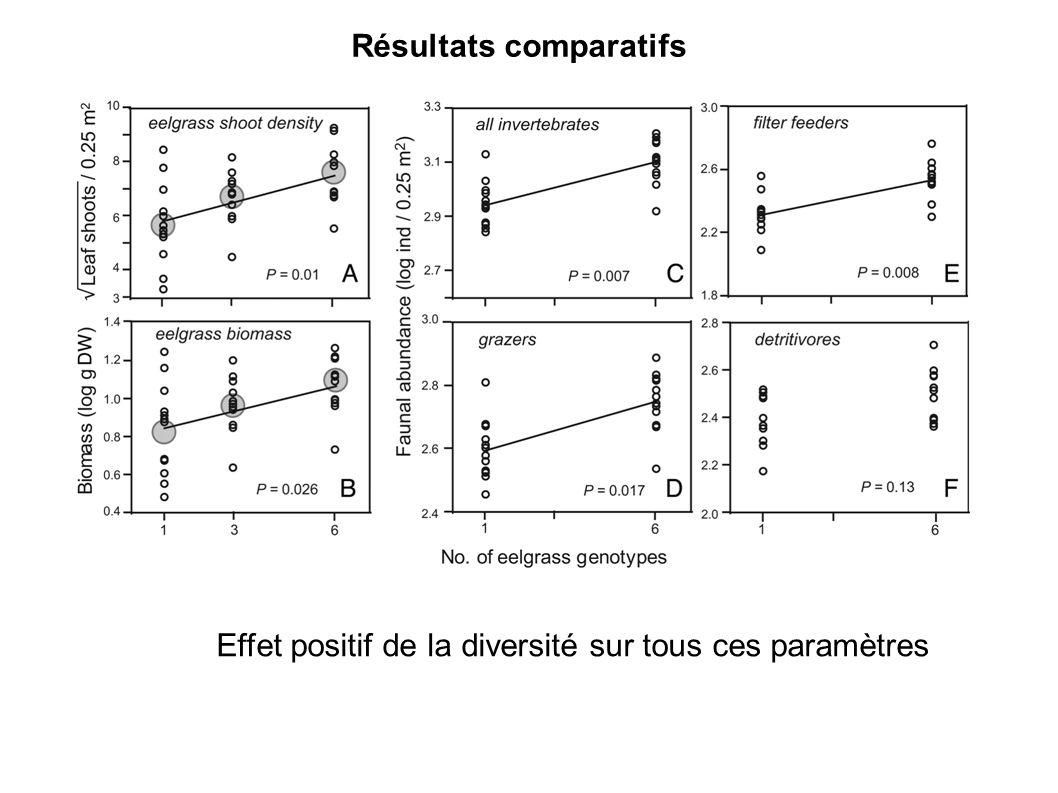 Effet positif de la diversité sur tous ces paramètres Résultats comparatifs