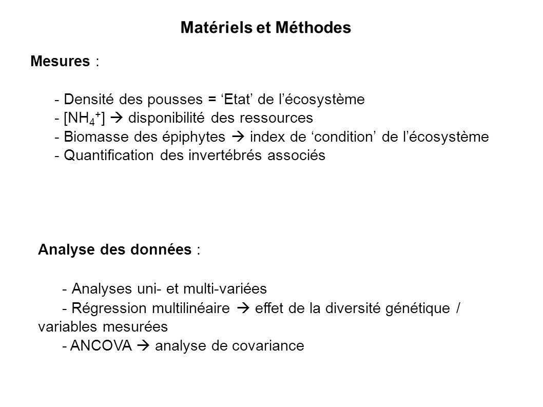 Mesures : - Densité des pousses = Etat de lécosystème - [NH 4 + ] disponibilité des ressources - Biomasse des épiphytes index de condition de lécosystème - Quantification des invertébrés associés Analyse des données : - Analyses uni- et multi-variées - Régression multilinéaire effet de la diversité génétique / variables mesurées - ANCOVA analyse de covariance Matériels et Méthodes