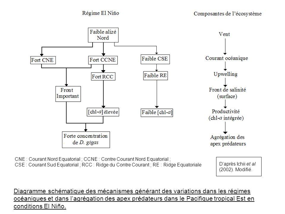 Diagramme schématique des mécanismes générant des variations dans les régimes océaniques et dans lagrégation des apex prédateurs dans le Pacifique tro