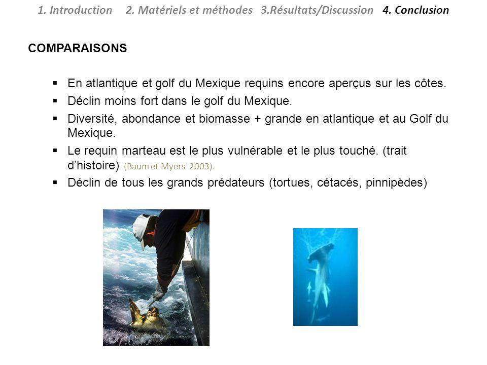 COMPARAISONS En atlantique et golf du Mexique requins encore aperçus sur les côtes.