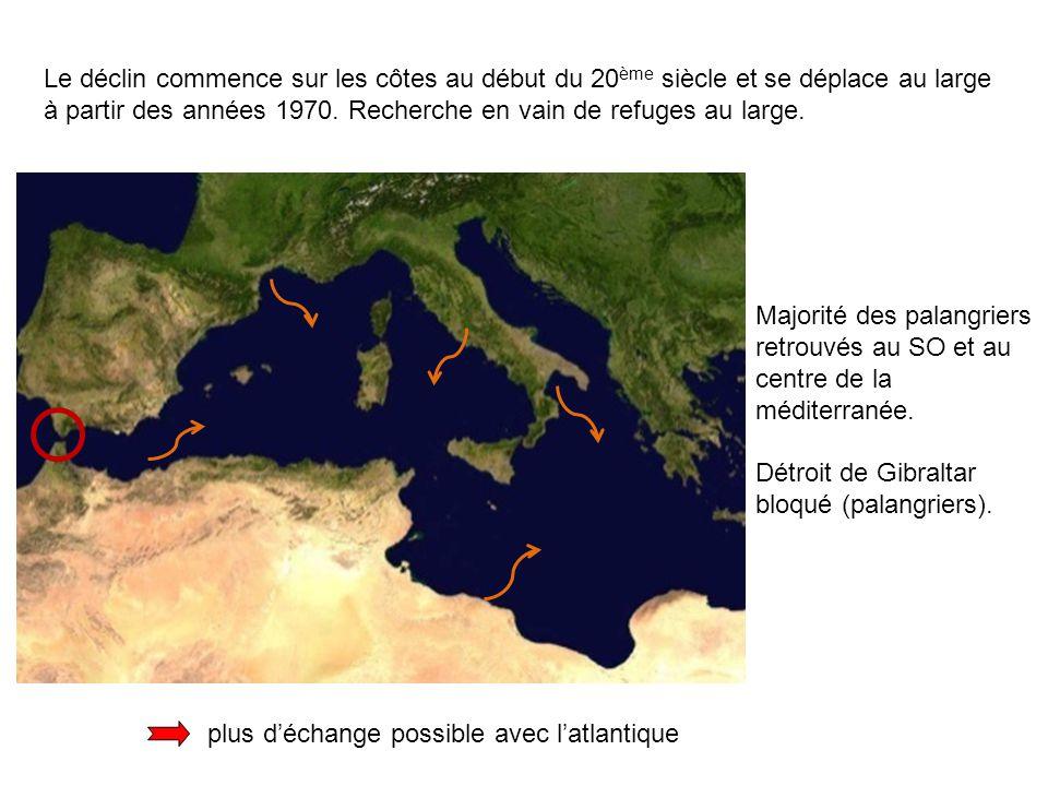 Le déclin commence sur les côtes au début du 20 ème siècle et se déplace au large à partir des années 1970.
