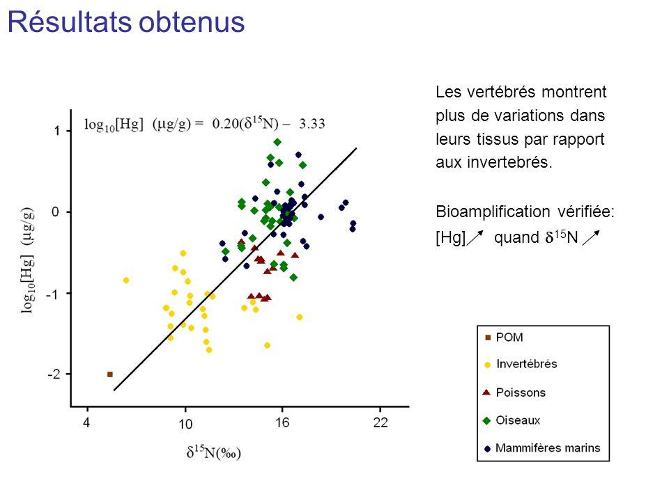 Résultats obtenus Les vertébrés montrent plus de variations dans leurs tissus par rapport aux invertebrés. Bioamplification vérifiée: [Hg] quand 15 N