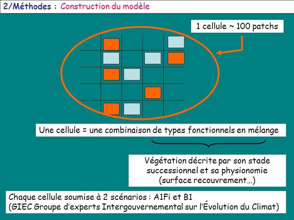 6 2/Méthodes : Construction du modèle Une cellule = une combinaison de types fonctionnels en mélange Végétation décrite par son stade successionnel et