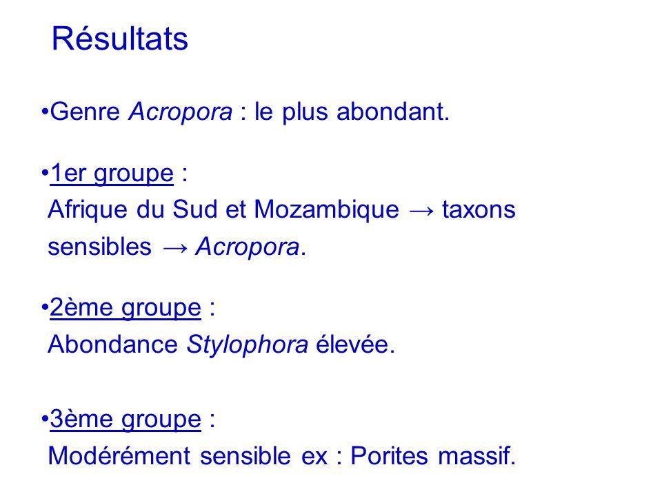 Résultats Genre Acropora : le plus abondant. 1er groupe : Afrique du Sud et Mozambique taxons sensibles Acropora. 2ème groupe : Abondance Stylophora é
