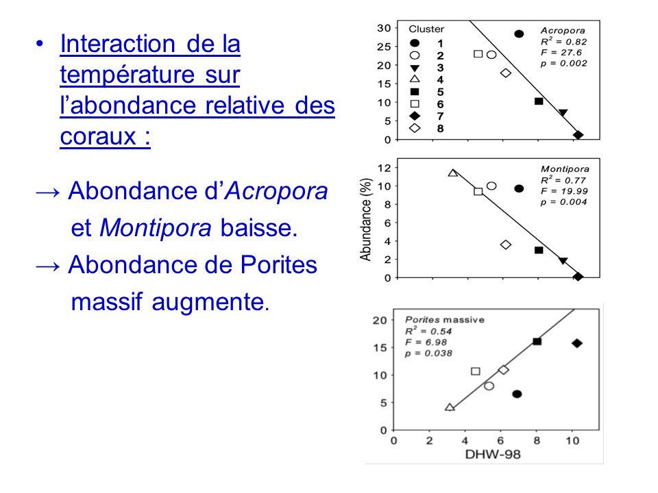 Interaction de la température sur labondance relative des coraux : Abondance dAcropora et Montipora baisse. Abondance de Porites massif augmente.