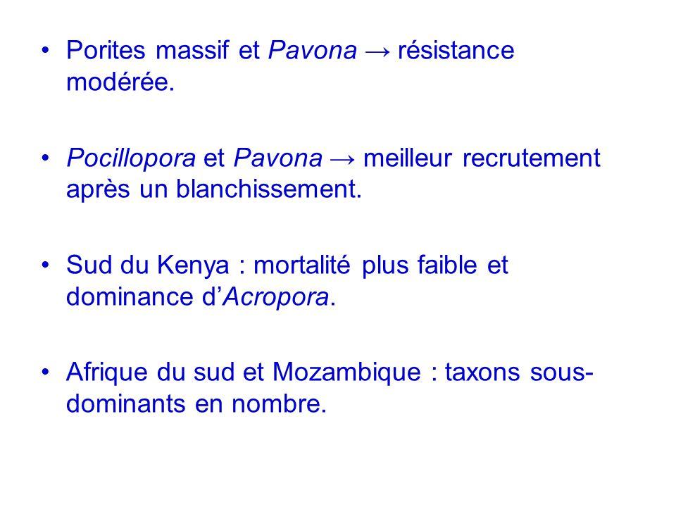 Porites massif et Pavona résistance modérée. Pocillopora et Pavona meilleur recrutement après un blanchissement. Sud du Kenya : mortalité plus faible