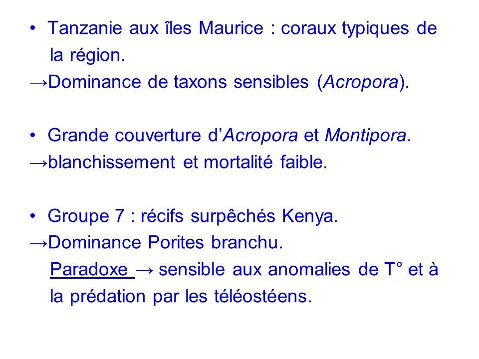 Tanzanie aux îles Maurice : coraux typiques de la région. Dominance de taxons sensibles (Acropora). Grande couverture dAcropora et Montipora. blanchis