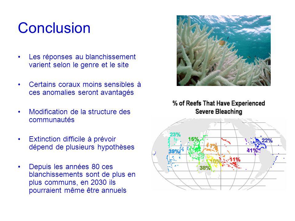 Conclusion Les réponses au blanchissement varient selon le genre et le site Certains coraux moins sensibles à ces anomalies seront avantagés Modificat