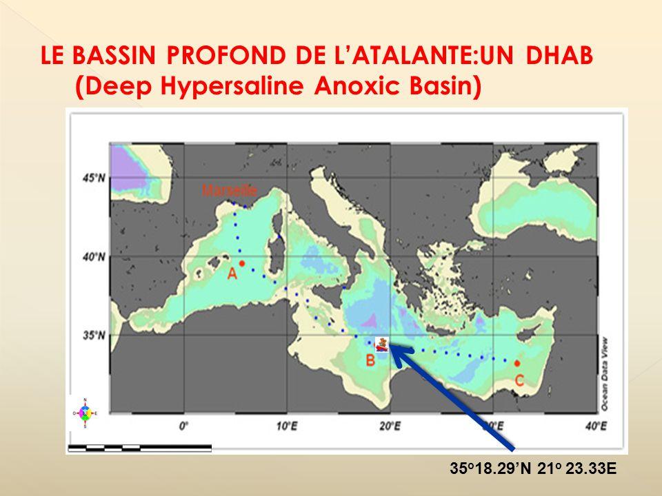 1:500 000 35 o 18.29N 21 o 23.33E LE BASSIN PROFOND DE LATALANTE:UN DHAB (Deep Hypersaline Anoxic Basin)