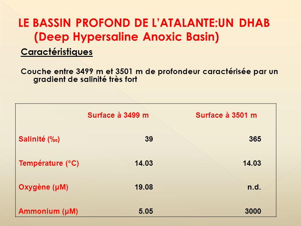 Caractéristiques Couche entre 3499 m et 3501 m de profondeur caractérisée par un gradient de salinité très fort Surface à 3499 mSurface à 3501 m Salin
