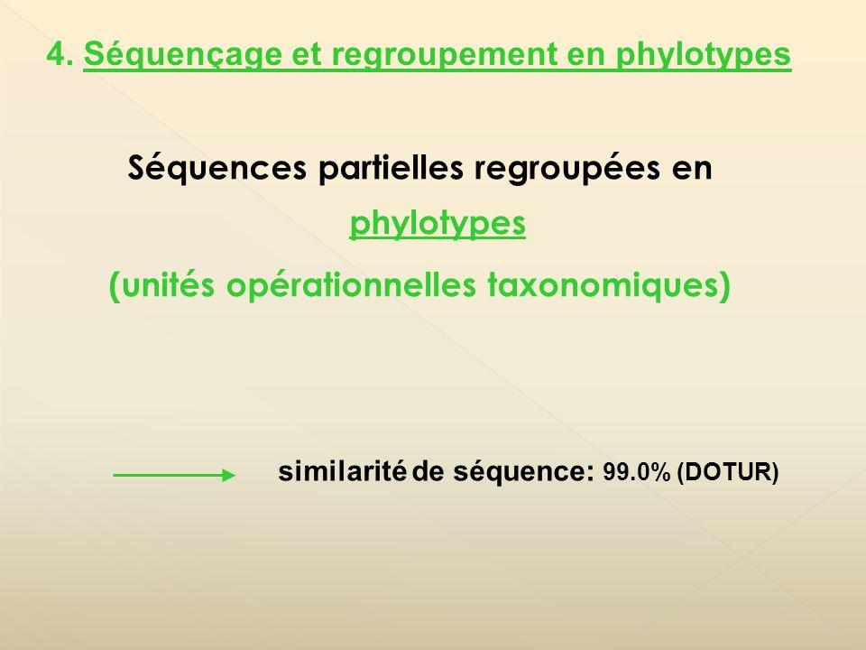 Séquences partielles regroupées en phylotypes (unités opérationnelles taxonomiques) 4. Séquençage et regroupement en phylotypes similarité de séquence