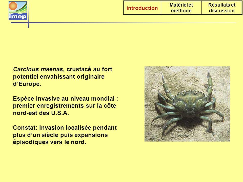 introduction Matériel et méthode Résultats et discussion Carcinus maenas, crustacé au fort potentiel envahissant originaire dEurope.
