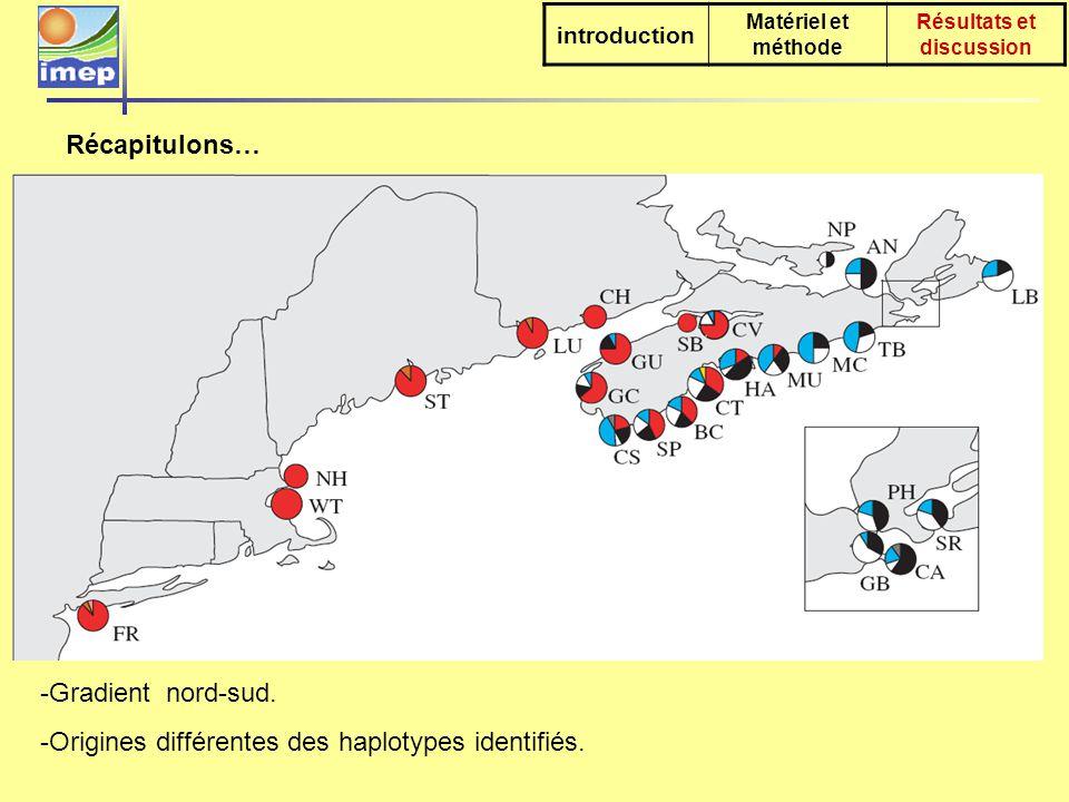 La diversité génétique est plus élevée dans les zones récemment colonisées 3 hypothèses introduction Matériel et méthode Résultats et discussion Contact Carcinus sp native – Carcinus maenas - Aucun enregistrement avant les années 1980.