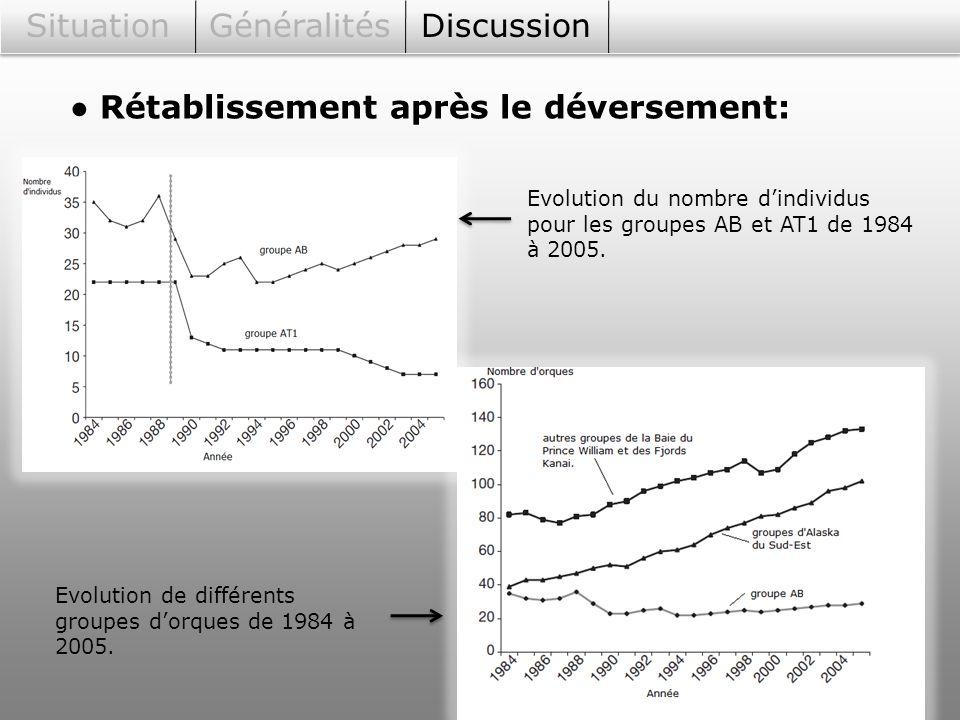SituationGénéralitésDiscussion Rétablissement après le déversement: Evolution du nombre dindividus pour les groupes AB et AT1 de 1984 à 2005. Evolutio