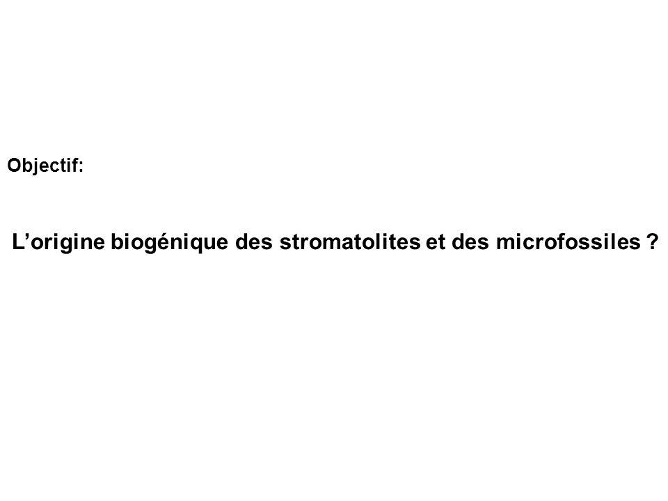 Lorigine biogénique des stromatolites et des microfossiles ? Objectif: