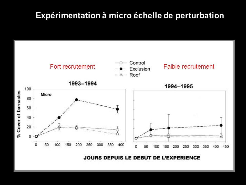 Expérimentation à micro échelle de perturbation Fort recrutement Faible recrutement