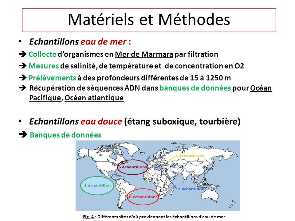 Echantillons eau de mer : Collecte dorganismes en Mer de Marmara par filtration Mesures de salinité, de température et de concentration en O2 Prélèvem