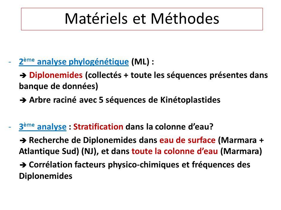 -2 ème analyse phylogénétique (ML) : Diplonemides (collectés + toute les séquences présentes dans banque de données) Arbre raciné avec 5 séquences de Kinétoplastides -3 ème analyse : Stratification dans la colonne deau.