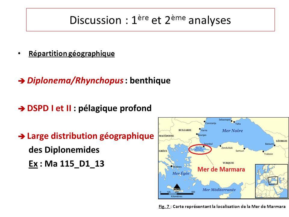 Répartition géographique Diplonema/Rhynchopus : benthique DSPD I et II : pélagique profond Large distribution géographique des Diplonemides Ex : Ma 115_D1_13 Discussion : 1 ère et 2 ème analyses Fig.