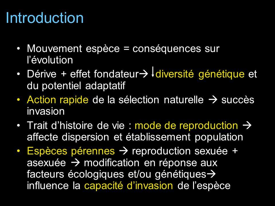Sélection favorise diploïdes plutôt que triploïdes car: –Reproduction sexuée diversité génétique –Graines plus facilement dispersées En AN tous les individus possèdent génotypes N6 fort niveau de reproduction clonale reproduction sexuée rôle mineur dans recrutement Hyp1 AN reproduction clonale habitats favorables et graines moins compétitives Succès des diploïdes car expansion plus rapide que les triploïdes Triploïdes ne produisent pas de bulbes propre à AN Diploïdes AN investissent plus dans la production de bulbes que celles EU caractéristique des diploïdes introduits Discussion