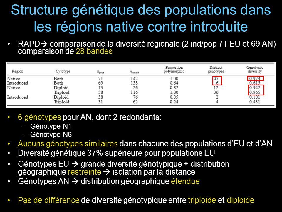 Structure génétique des populations dans les régions native contre introduite RAPD comparaison de la diversité régionale (2 ind/pop 71 EU et 69 AN) comparaison de 28 bandes 6 génotypes pour AN, dont 2 redondants: –Génotype N1 –Génotype N6 Aucuns génotypes similaires dans chacune des populations dEU et dAN Diversité génétique 37% supérieure pour populations EU Génotypes EU grande diversité génotypique + distribution géographique restreinte isolation par la distance Génotypes AN distribution géographique étendue Pas de différence de diversité génotypique entre triploïde et diploïde