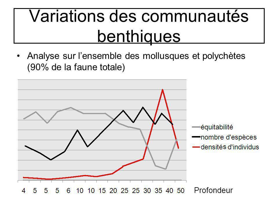 Variations des communautés benthiques Analyse sur lensemble des mollusques et polychètes (90% de la faune totale) Profondeur