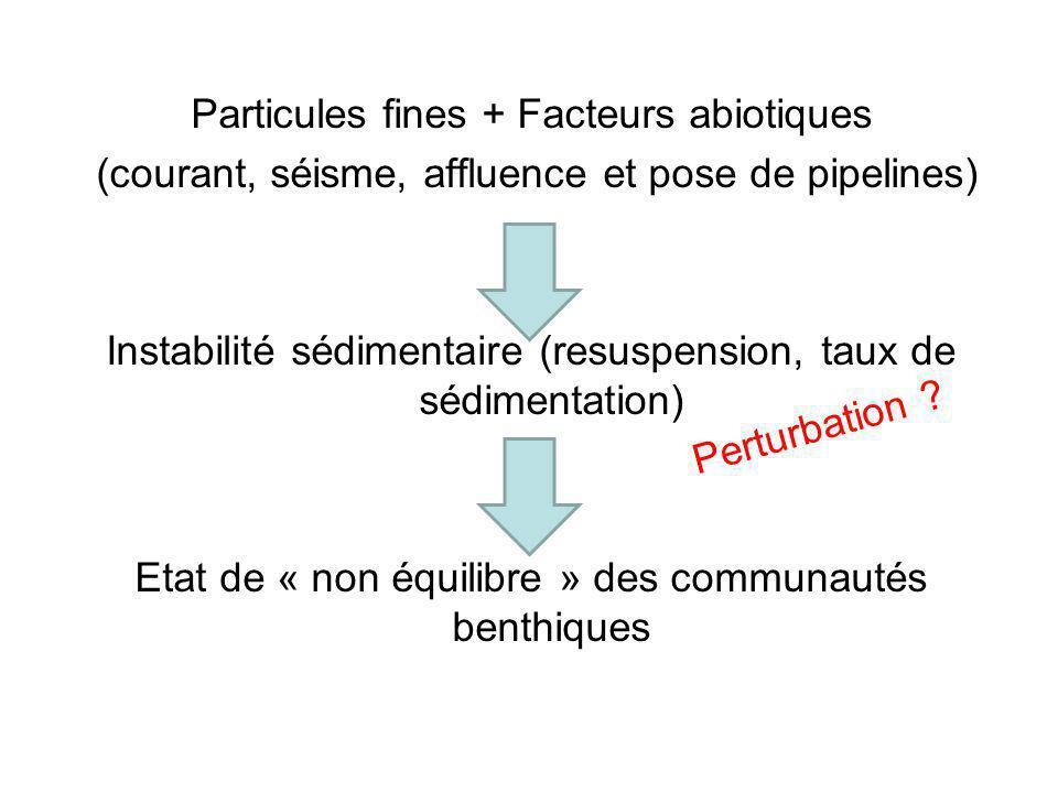 Particules fines + Facteurs abiotiques (courant, séisme, affluence et pose de pipelines) Instabilité sédimentaire (resuspension, taux de sédimentation