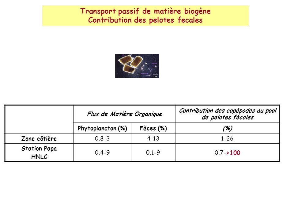 Transport passif de matière biogène Contribution des pelotes fecales Flux de Matière Organique Contribution des copépodes au pool de pelotes fécales Phytoplancton (%)Fèces (%)(%) Zone côtière0.8-34-131-26 Station Papa HNLC 0.4-90.1-90.7->100