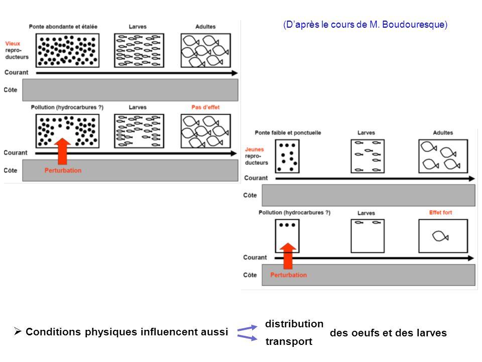 (Daprès le cours de M. Boudouresque) Conditions physiques influencent aussi distribution transport des oeufs et des larves