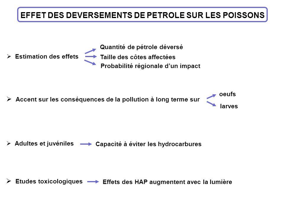 EFFET DES DEVERSEMENTS DE PETROLE SUR LES POISSONS Estimation des effets Quantité de pétrole déversé Taille des côtes affectées Probabilité régionale