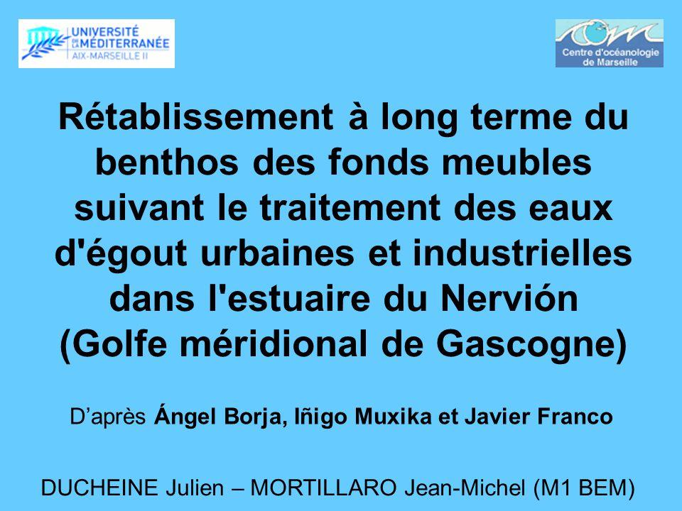 Rétablissement à long terme du benthos des fonds meubles suivant le traitement des eaux d'égout urbaines et industrielles dans l'estuaire du Nervión (