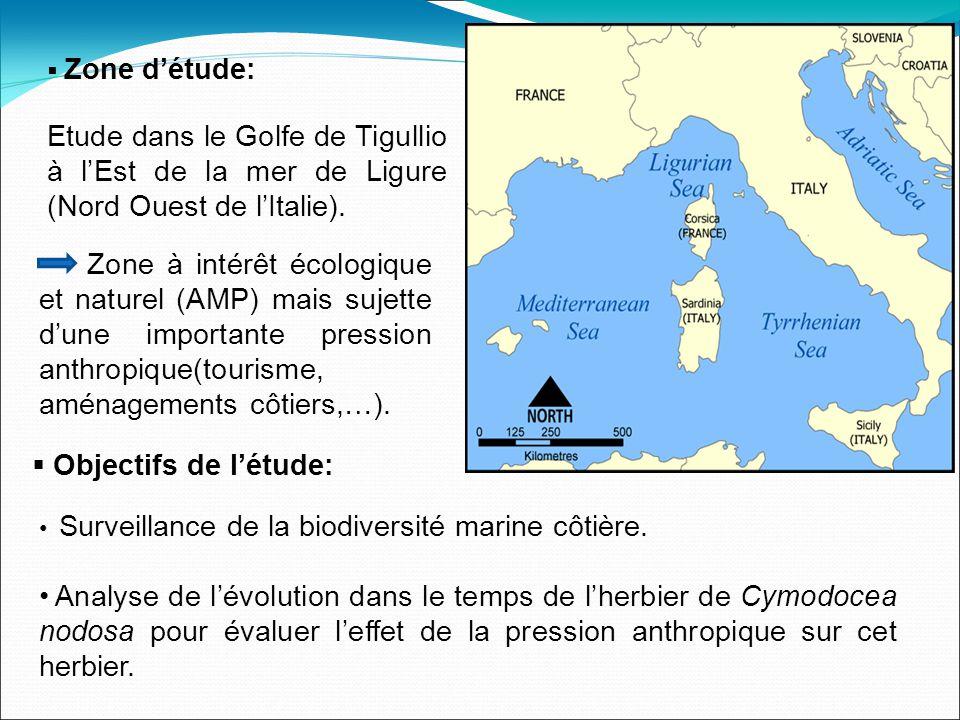 Zone détude: Etude dans le Golfe de Tigullio à lEst de la mer de Ligure (Nord Ouest de lItalie).