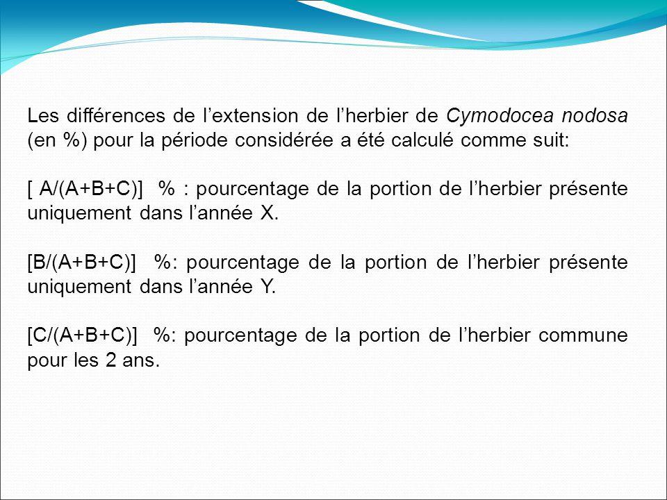 Les différences de lextension de lherbier de Cymodocea nodosa (en %) pour la période considérée a été calculé comme suit: [ A/(A+B+C)] % : pourcentage de la portion de lherbier présente uniquement dans lannée X.